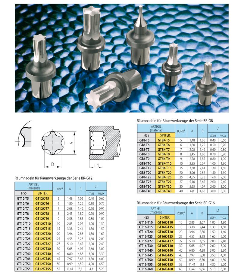 Gut gemocht Räumnadeln für TORX®-Schlüssel | Broaching Tools CF09